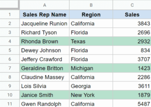 Color Alternate rows using conditional formatting in Google Sheets - Resulting data